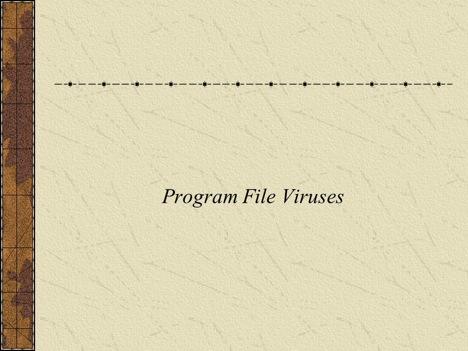 Program file viruses (hereafter called just file viruses ) use executable files as their medium for propagation.