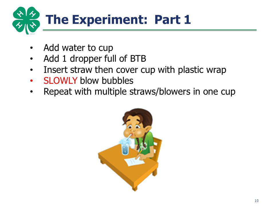 11 The Experiment: Part 1 BEFORE AFTER What do you think caused the liquid to turn yellow.
