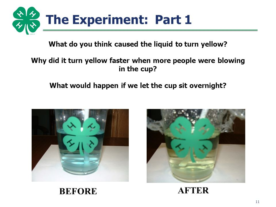 12 The Experiment: Part 2 Fill cup half full of water and pour into baggie Seal except for one small portion and press out as much air as possible Add ½ tablet, seal, shake 3 seconds, and observe Using new bag & water, repeat with 1 tablet Using new bag & water, repeat with 2 tablets
