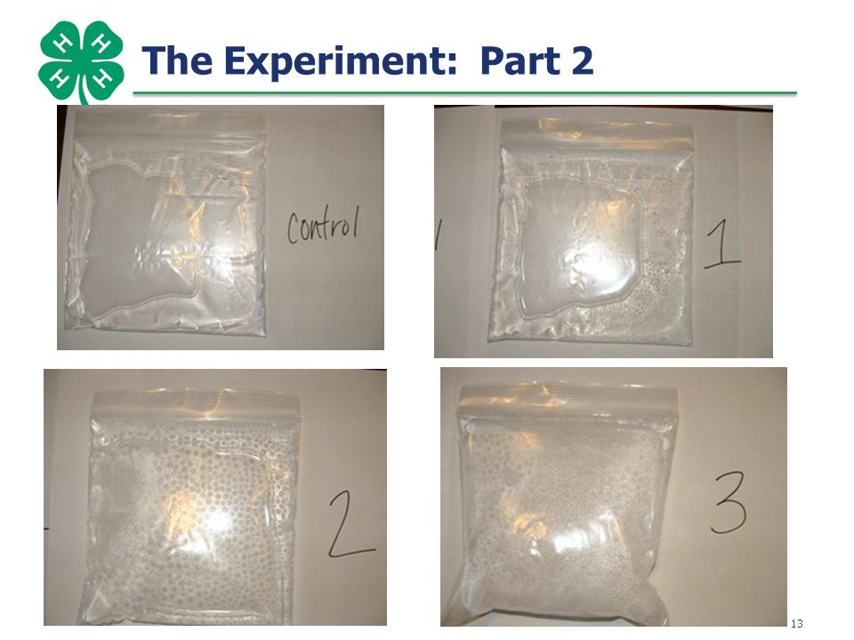 14 The Experiment: Part 2
