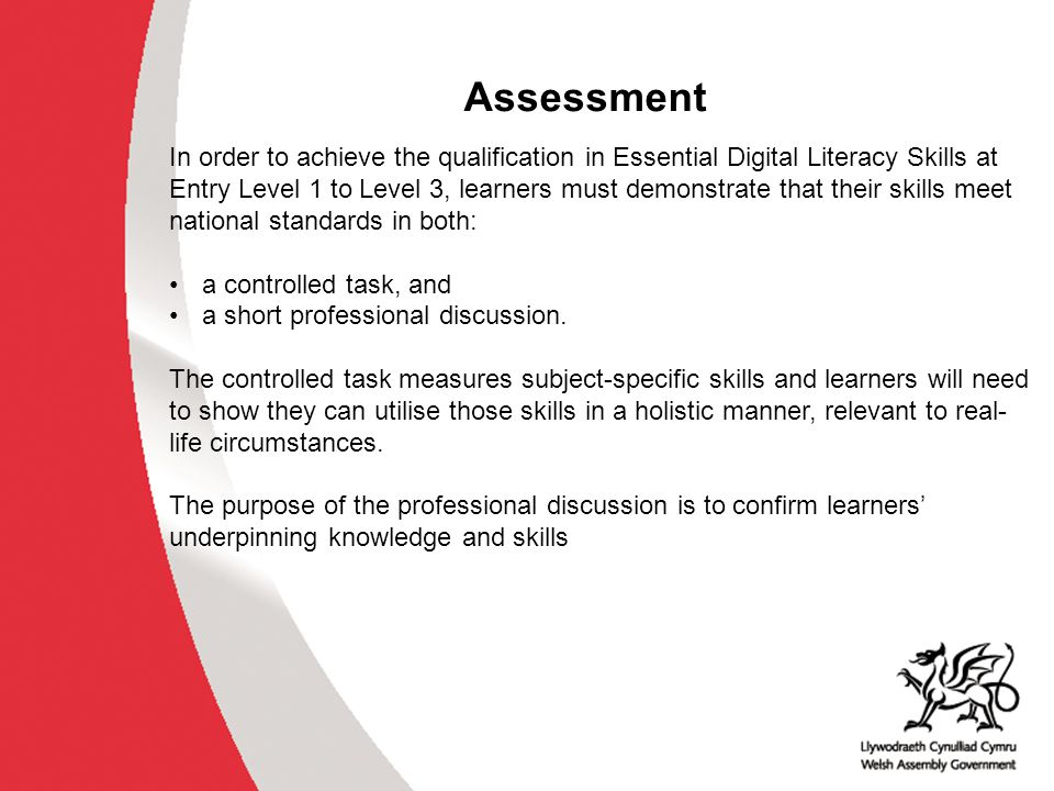 Support for Digital Literacy WG has worked with awarding organisations to develop a L3 Essential Skills Practitioner Qualification for delivering Digital Literacy WG is working with JISC RSC to develop a blended online course for practitioners – Train the Trainer WG will support the CPD to train 20-30 Essential Digital Literacy Skills trainers in the North and 20-30 in the South of Wales.