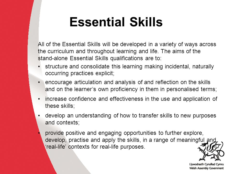 Essential Employability Skills In order to achieve the qualification in Essential Employability Skills at Levels 1, 2 or 3, learners must demonstrate that their skills meet national standards in both controlled tasks.