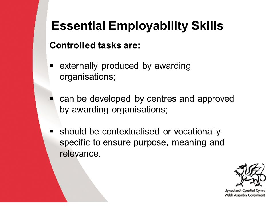 Essential Employability Skills Next Steps Ministerial approval Feedback from Internal Steering Group and practitioner networks, i.e.
