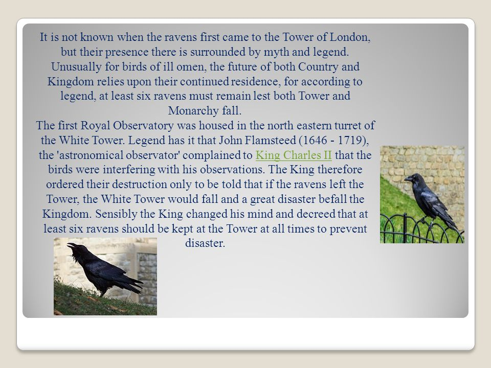 It is not known when the ravens first came to the Tower of London, but their presence there is surrounded by myth and legend.