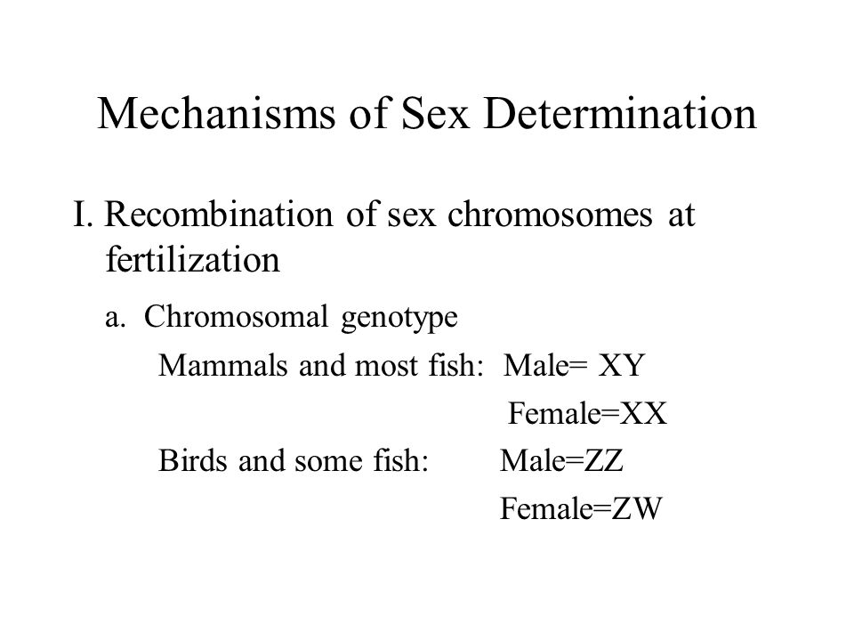 Sex Determination/Development b.H-Y Antigen 1.