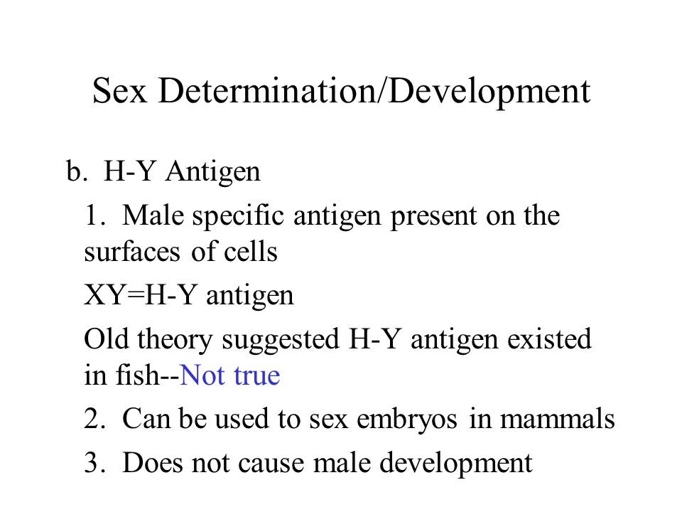 Sex Determination/Development SRY Gene Located on the Y chromosome of mammals and NOT FISH Stimulates male development Produces Testis Determining Factor (TDF) FISH--Male/female development is regulated by genetic and hormonal control