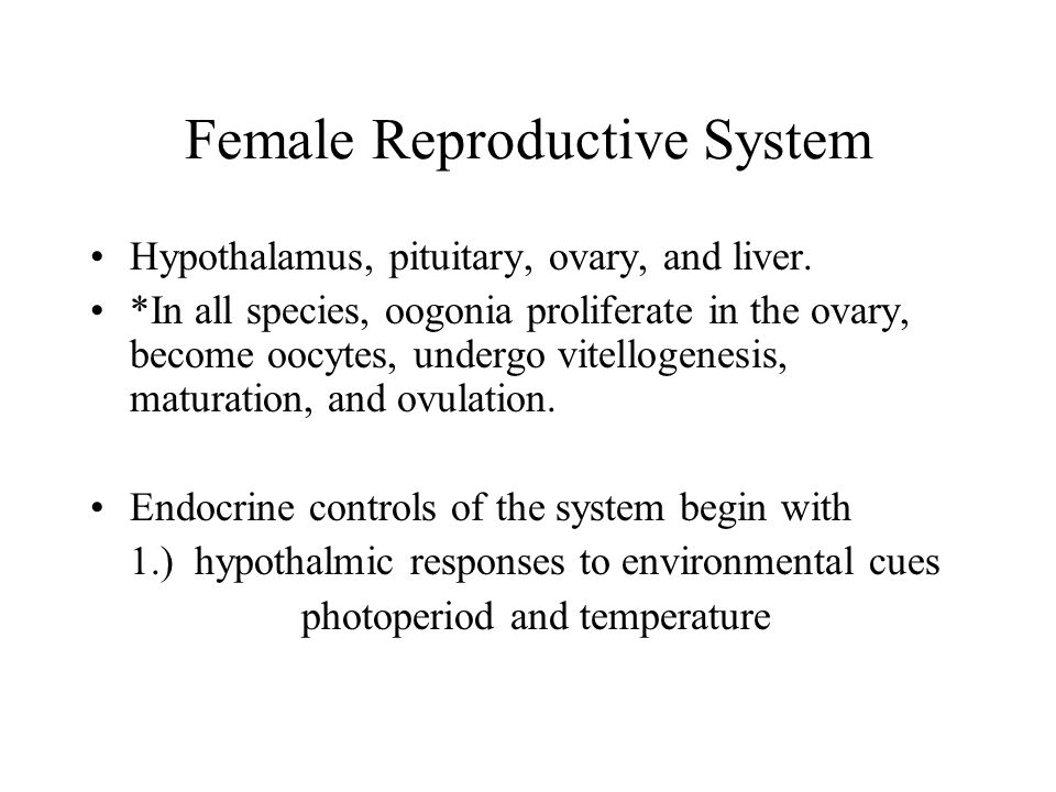 Female Reproductive System 2.) hypothalmic responses to proximal cues like substrate type, courtship behaviors, and pheromones.
