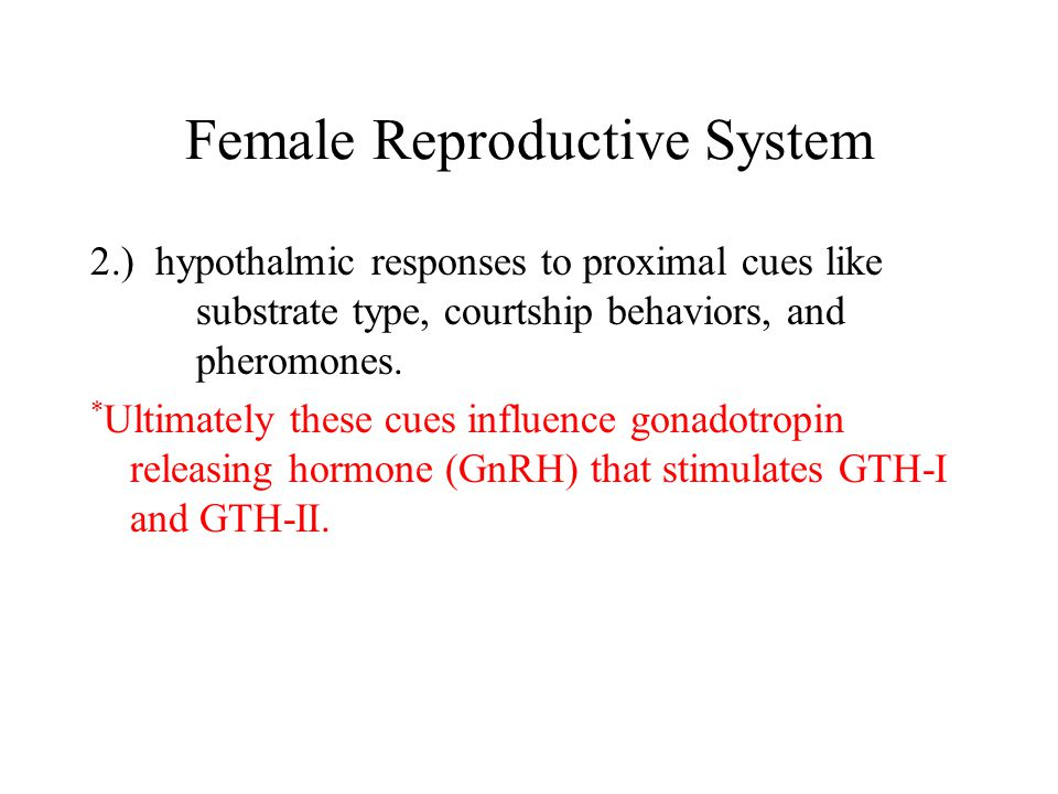 Role of GTH-I and GTH-II Ovarian and testicular function is controlled by GTH-I and GTH-II (glycoprotein heterodimers).