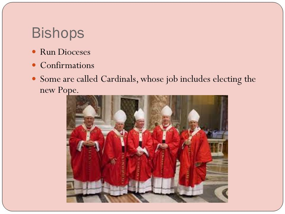 Pope The Pope is a Bishop too.He is the Bishop of Rome.