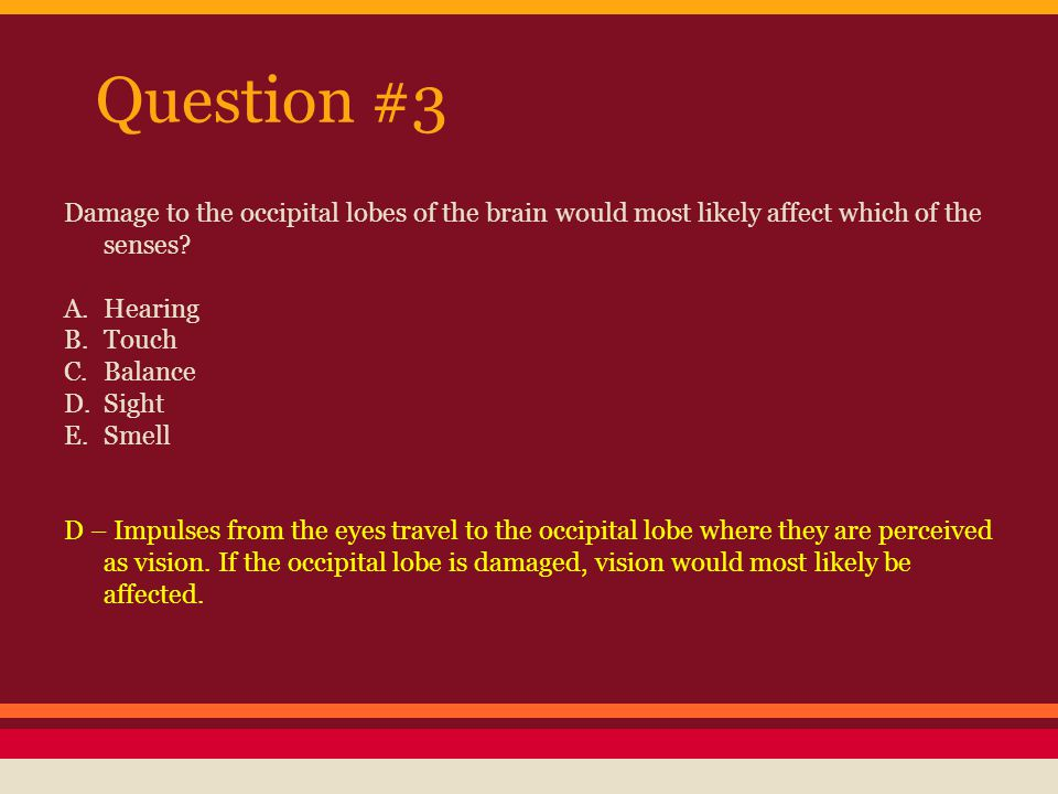 Question #4 A doctor examining a car crash victim in order to determine whether the crash caused structural damage to the brain would use what kind of brain scan.