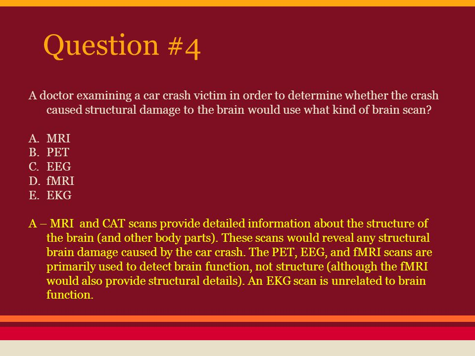 Question #5 Children who suffer brain damage may be able to regain their physical and mental abilities more quickly than older brain damage patients due to which of the following properties of the brain.