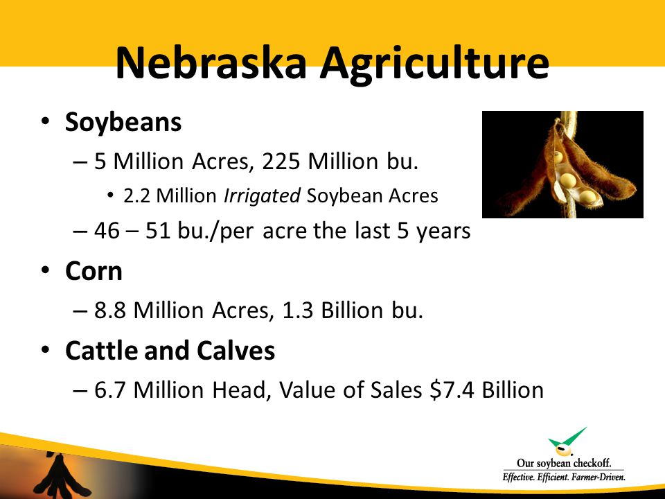 Nebraska Soybean Board Soybean Checkoff – ½ of 1% of the net sales price Ex.