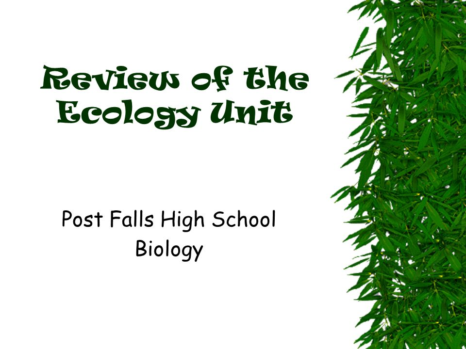 What is Ecology? The
