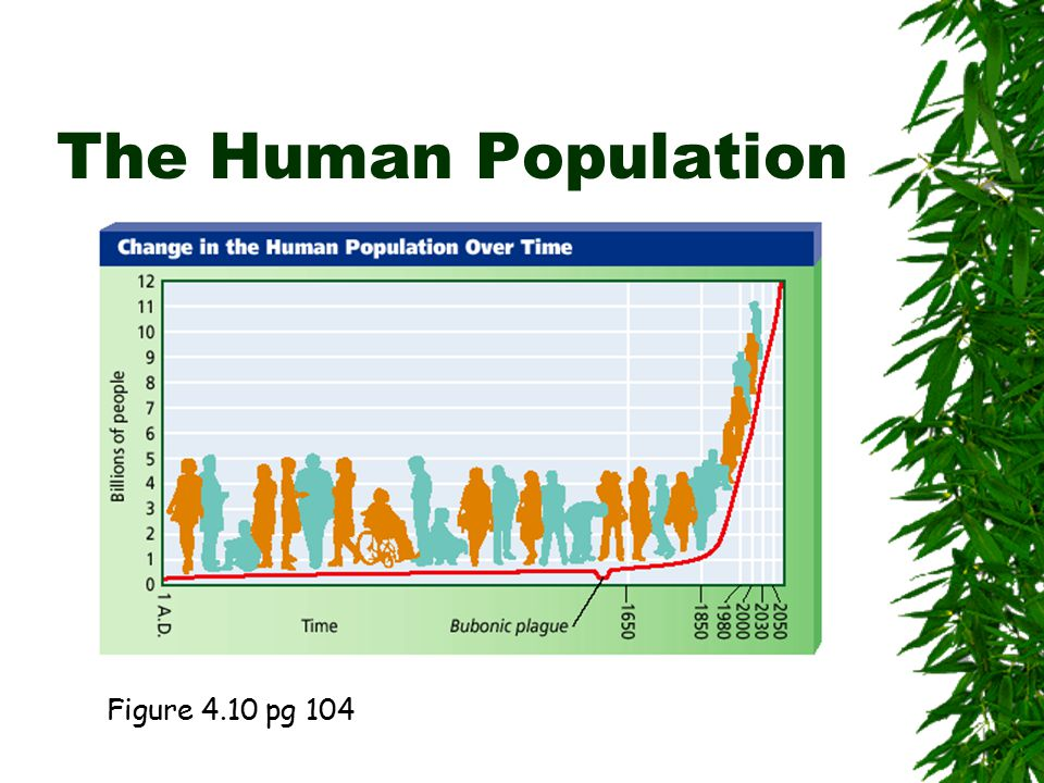 Demography Vocabulary  Age Structure  Immigration  Emigration  Birth/Death Rate