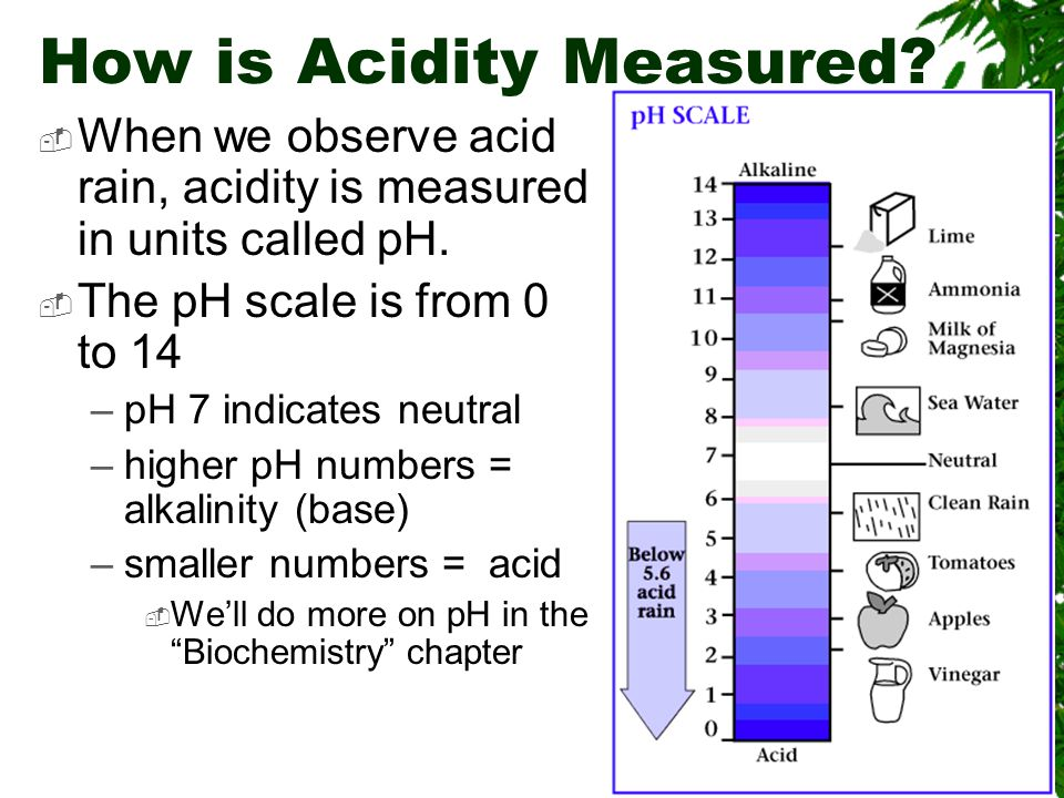 Natural Acid Precipitation  CO 2 combines with water to form a weak acid H 2 CO 3 (carbonic acid)  But we are adding to the problem… –by adding nitric and sulfuric acids Look at the clean rain – it's already slightly acidic???