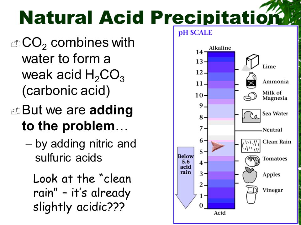 Effects of Acid Precipitation In Japan, rain which registers pH 5.6 or less is considered acid rain; some 80-90% of the rain that falls in Japan in a year is acid rain.