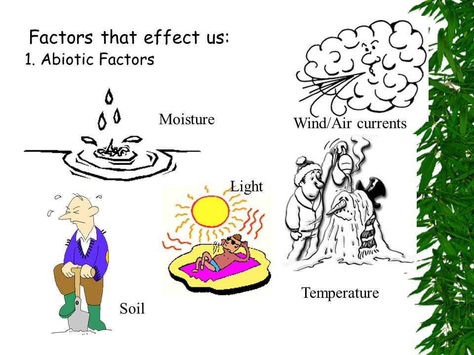  A- stands for non  Bio- stands for living  Abiotic Factors- nonliving factors