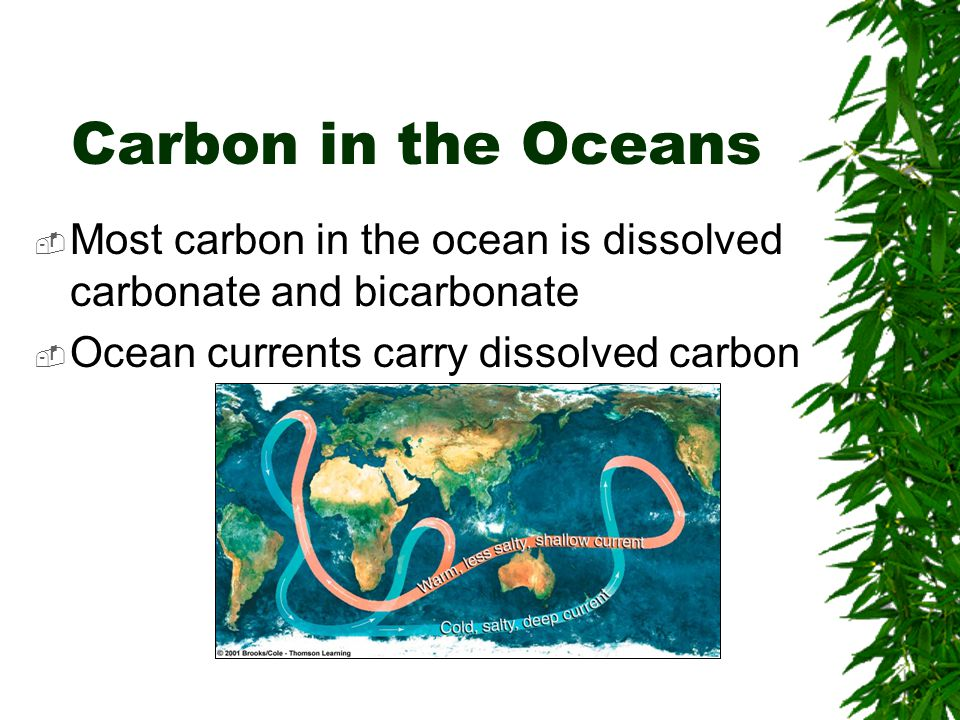 Carbon in Atmosphere  Atmospheric carbon is mainly carbon dioxide  Carbon dioxide is added to atmosphere –Aerobic respiration, volcanic action, burning fossil fuels, decomposition of organic materials  Removed by photosynthesis