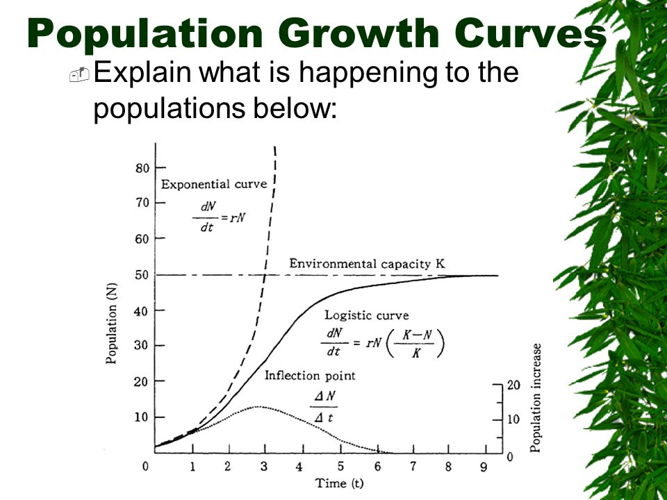  Rate at which a population could grow if it had unlimited resources  If a population reached its biotic potential it would have exponential growth Biotic Potential = Reproductive Potential