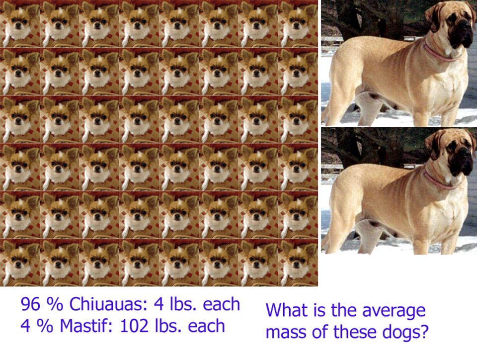 The Structure of the Atom Isotopes and average atomic weight: Average dog mass: 96 % Chiuauas @ 4 lbs.