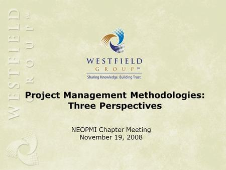 Project Management Methodologies: Three Perspectives NEOPMI Chapter Meeting November 19, 2008.