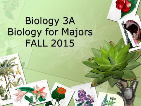 Biology 3A Biology for Majors FALL 2015. About this course Biology 3A is the first in the three-course sequence designed for those majoring in the biological.