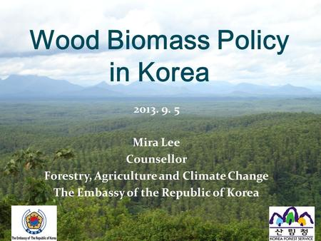 2013. 9. 5 Mira Lee Counsellor Forestry, Agriculture and Climate Change The Embassy of the Republic of Korea Wood Biomass Policy in Korea.