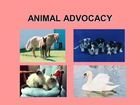 ANIMAL ADVOCACY. TOPIC ISSUE  Providing humane and kind treatment of all animals  Law researched is Maryland CODE ANN. art. 27, §§ 59 et seq. last amended.