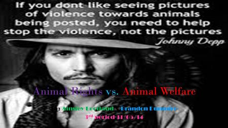 Animal Rights vs. Animal Welfare By: Ainsley Bootland & Brandon Dunmire 3 rd period 11/05/14.