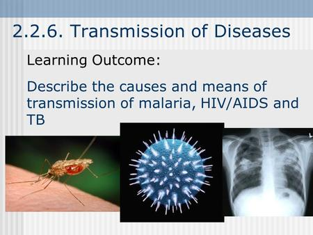 2.2.6. Transmission of Diseases Learning Outcome: Describe the causes and means of transmission of malaria, HIV/AIDS and TB.