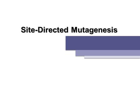 Site-Directed Mutagenesis. 01. GFP & GFP Derivatives 02. Site-Directed Mutagenesis 03. pET Expression System.