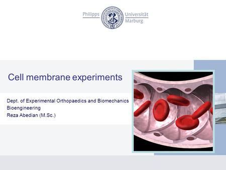 Cell membrane experiments Dept. of Experimental Orthopaedics and Biomechanics Bioengineering Reza Abedian (M.Sc.)