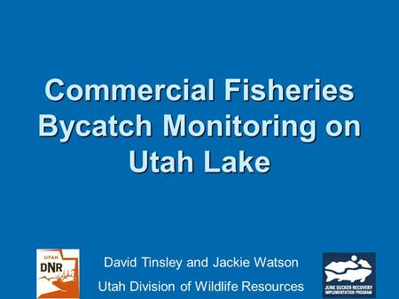 Commercial Fisheries Bycatch Monitoring on Utah Lake David Tinsley and Jackie Watson Utah Division of Wildlife Resources.
