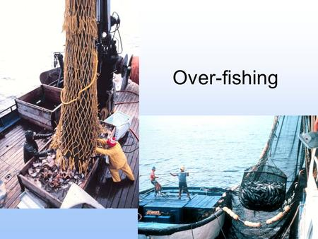 Over-fishing. What is it? Over-fishing occurs when the catch is at a rate greater than natural reproduction can sustain. Worldwide, we are removing 180.
