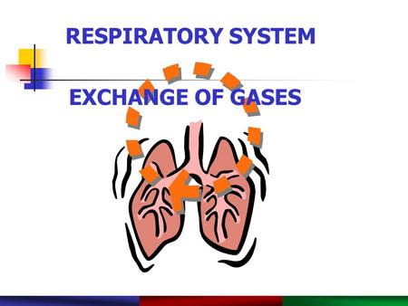 Copyright © 2003 Pearson Education, Inc. publishing as Benjamin Cummings. RESPIRATORY SYSTEM PowerPoint ® Lecture Slide Presentation by Robert J. Sullivan,