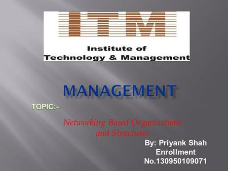 Networking Based Organizations and Structures By: Priyank Shah Enrollment No.130950109071.