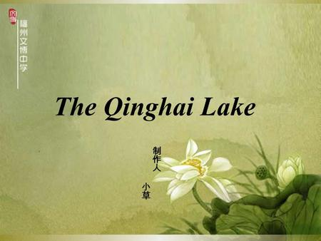 The Qinghai Lake. Location The Qinghai lake is also called cuowenbu( 措温布 ) , namely, it means the ching lake. It locates in qinghai basin of the northeast.