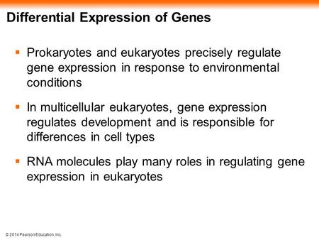 © 2014 Pearson Education, Inc. Differential Expression of Genes  Prokaryotes and eukaryotes precisely regulate gene expression in response to environmental.