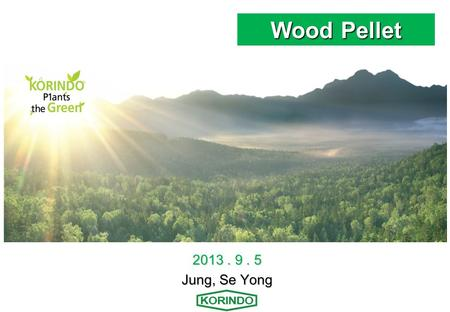Wood Pellet 2013. 9. 5 Jung, Se Yong. Contents Ⅰ. COMPANY PROFILE Ⅱ. WHAT IS WOOD PELLET ? Ⅲ. KORINDO WOOD PELLET MILL.