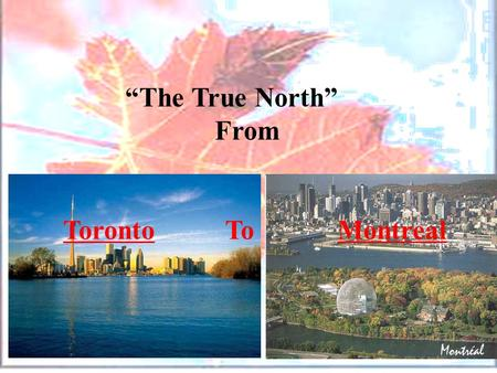 """The True North"" From Toronto To Montreal. ""The True North"" From Toronto To Montreal."