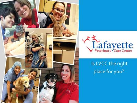 Is LVCC the right place for you?. THE FUNDAMENTALS OF A CAREER AT LVCC Whether you are looking to transition into a position with LVCC from another veterinary.