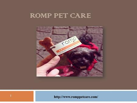 ROMP PET CARE 1  It is very essential that dogs receive physical and mental stimulation to make them happy. Dogs left on their.