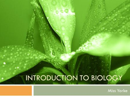 INTRODUCTION TO BIOLOGY Miss Yorke. What is Biology?  Make your own definition  Biology – The science of life and of living organisms, including their.