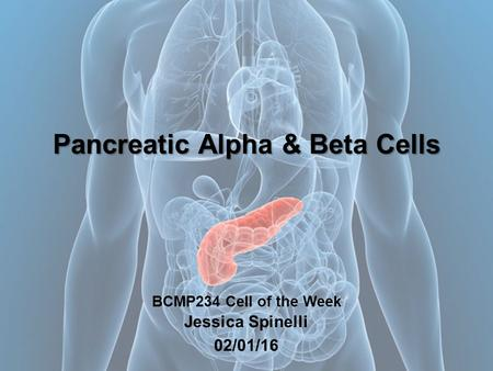 Pancreatic Alpha & Beta Cells Pancreatic Alpha & Beta Cells BCMP234 Cell of the Week Jessica Spinelli 02/01/16.