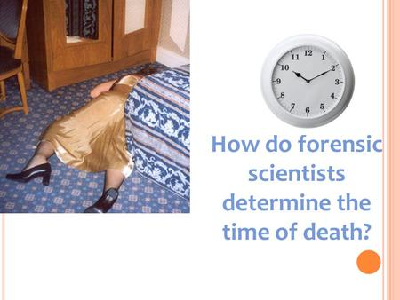 How do forensic scientists determine the time of death?