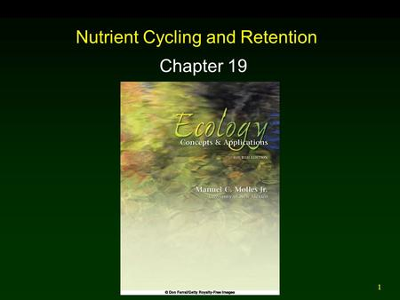 1 Nutrient Cycling and Retention Chapter 19. 2 Outline Nutrient Cycles  Phosphorus  Nitrogen  Carbon Rates of Decomposition  Terrestrial  Aquatic.