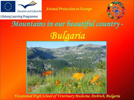Mountains in our beautiful country - Bulgaria Vocational High School of Veterinary Medicine, Dobrich, Bulgaria Animal Protection in Europe.