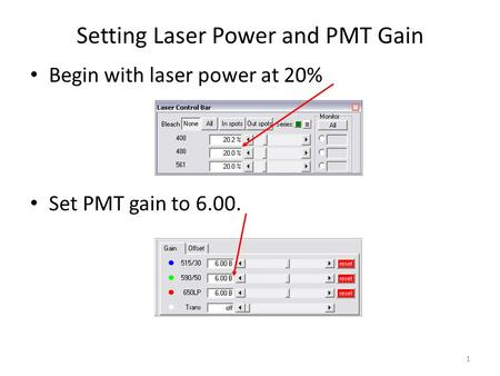 1 Setting Laser Power and PMT Gain Begin with laser power at 20% Set PMT gain to 6.00.