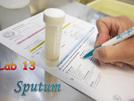  Sputum is a secretion produced in the lungs and the bronchi (tubes that carry the air to the lung).  This mucus-like secretion may become infected,