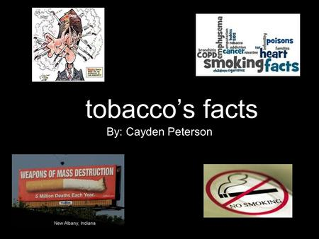 Tobacco's facts By: Cayden Peterson. tobacco facts Tobacco use is one of the biggest health problems the world has ever faced. There are more than one.
